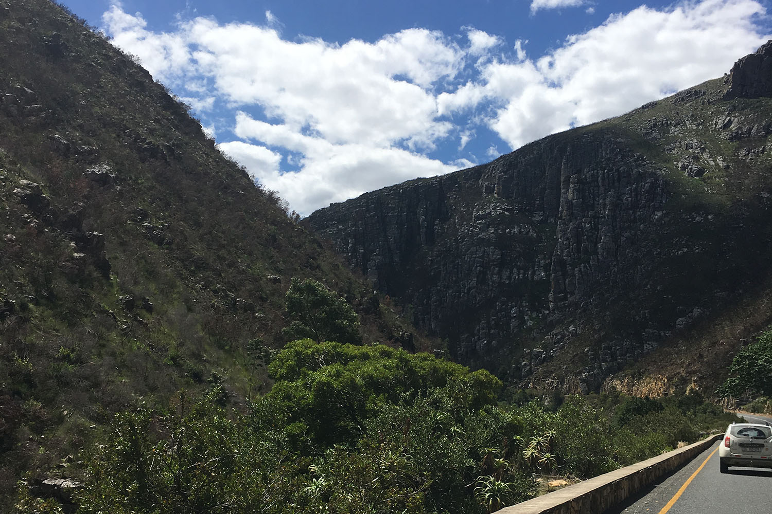Scenic Sightseeing Garden Route Tour