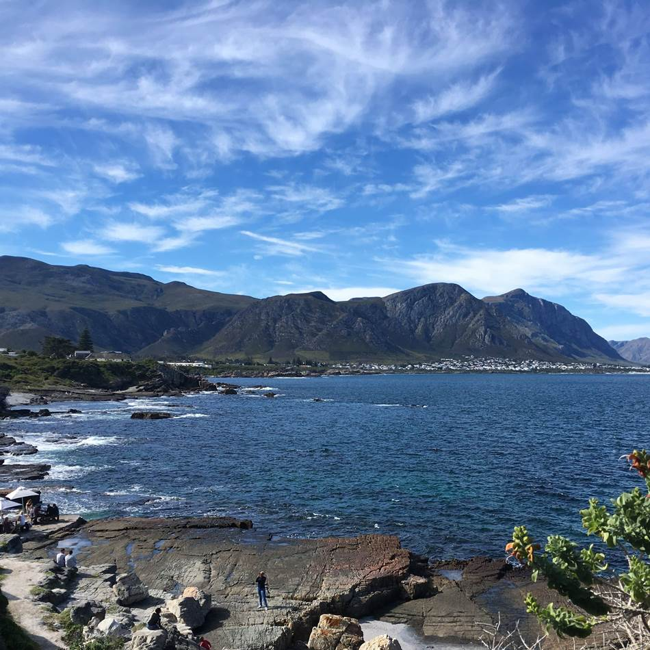 Hermanus Tour Cape Town